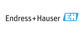 Endress+Hauser Representative