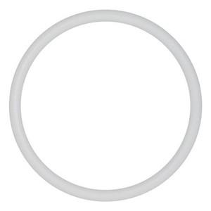 Wilden-02-1205-55-PTFE-O-ring